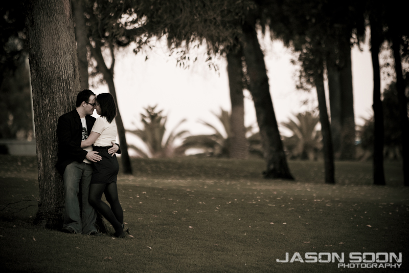 Kings Park Pre-Wedding Photography